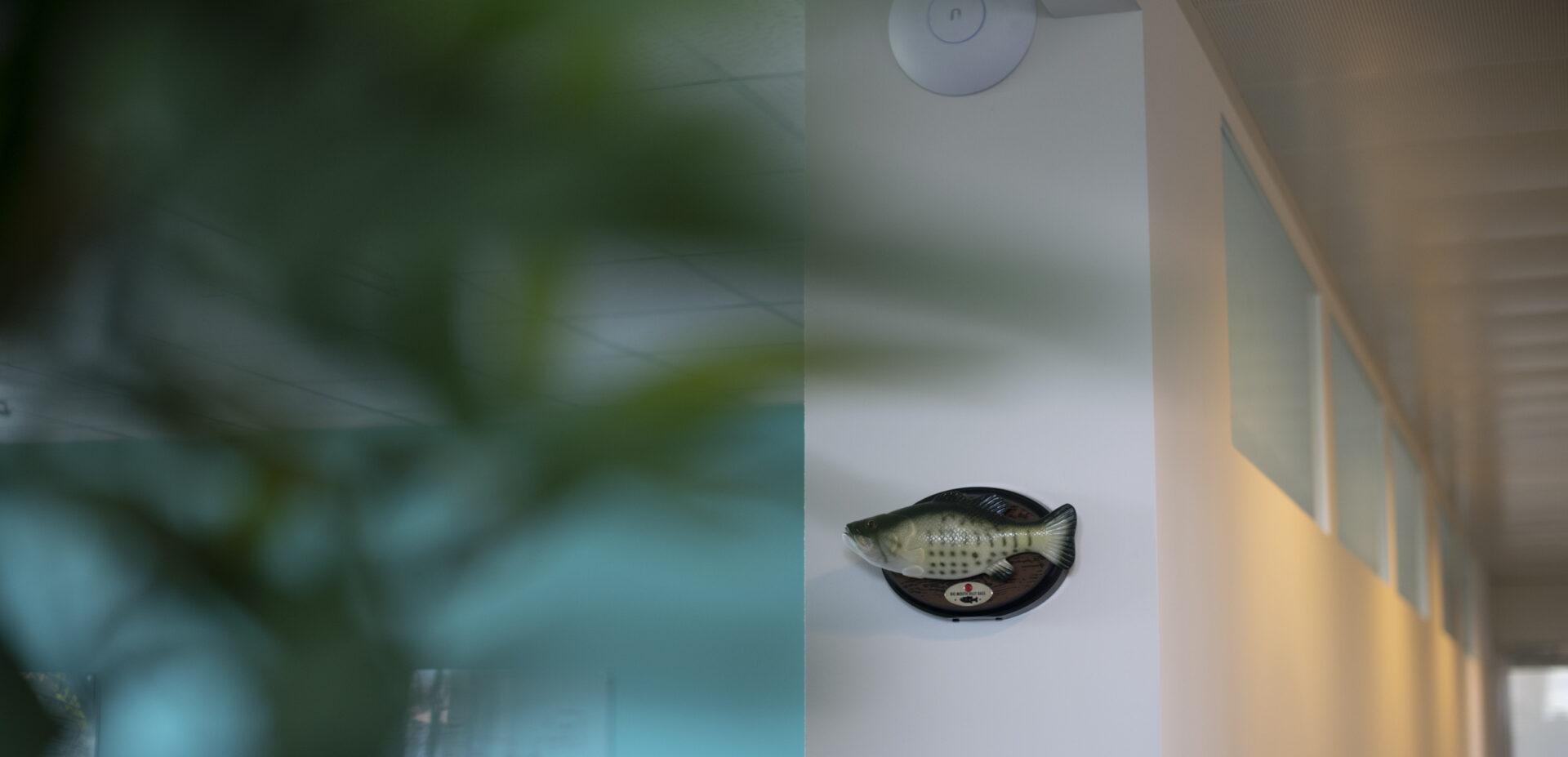 Wanddekoration im Büro